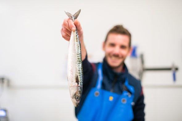 reportage _ photo _ ô'poisson